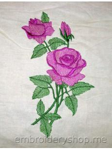 Роза flw0119