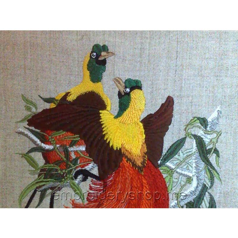 Райская птица вышивка 57