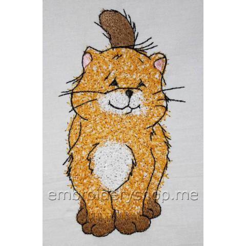 Котик cat0016