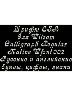 Шрифт ESA Calligraph Regular Wfont002
