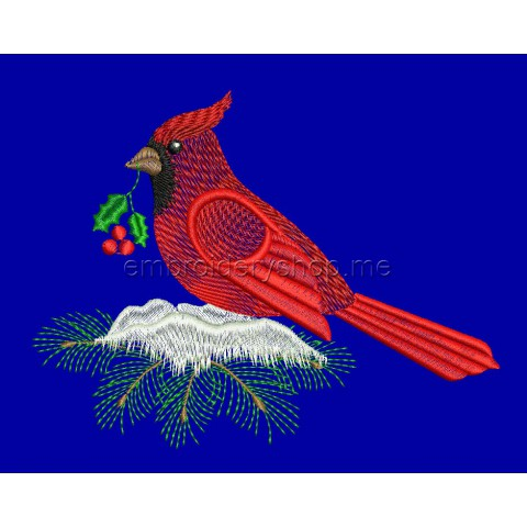 Птица nyr0045