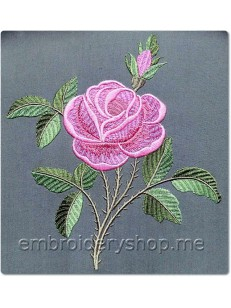 Роза flw0092