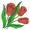 Тюльпаны «Огненный рассвет» flw0110