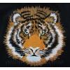 Тигр tgr0024