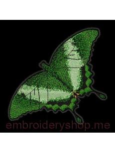 Бабочка bfl0008
