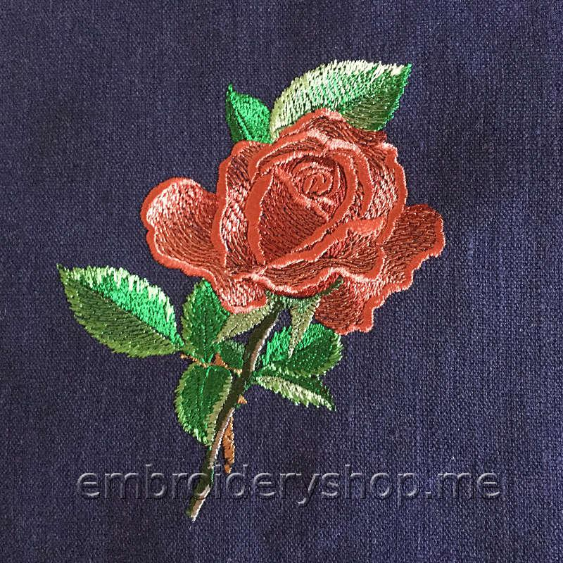 Роза счастья flw0120