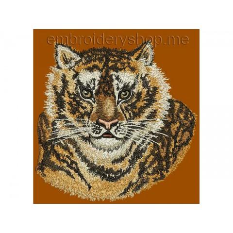 Тигр tgr0019