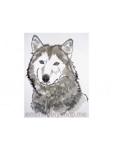 Волк_wlf0003
