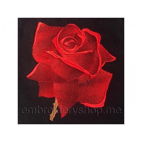 Роза, большой размер flw0024