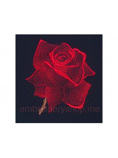 Роза_средний размер_flw0022
