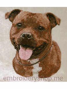 Стаффордширский бультерьер_dog0012