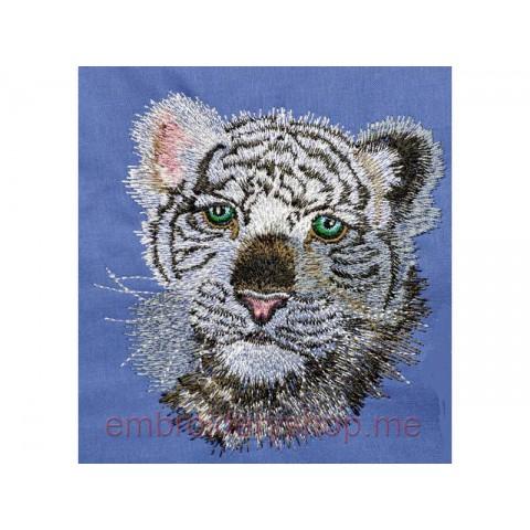 Тигр tgr0006