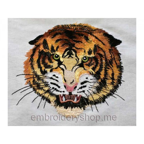 Тигр tgr0020