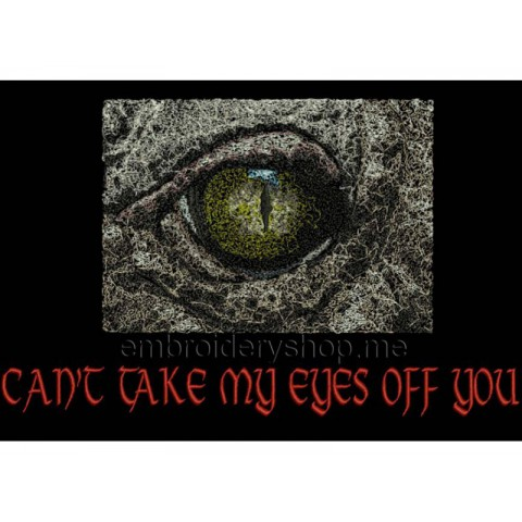 Глаз anm0006