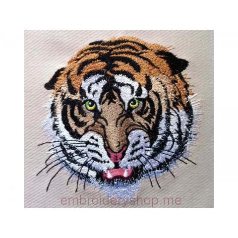 Тигр tgr0021