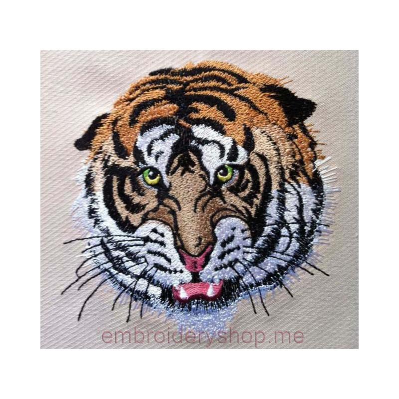 Тигр_tgr0021