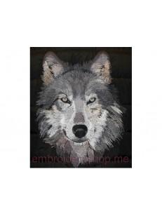 Волк_wlf0005