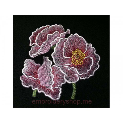 Цветы flw0054