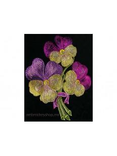 Цветы flw0058