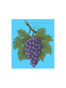 Гроздь винограда frt0004