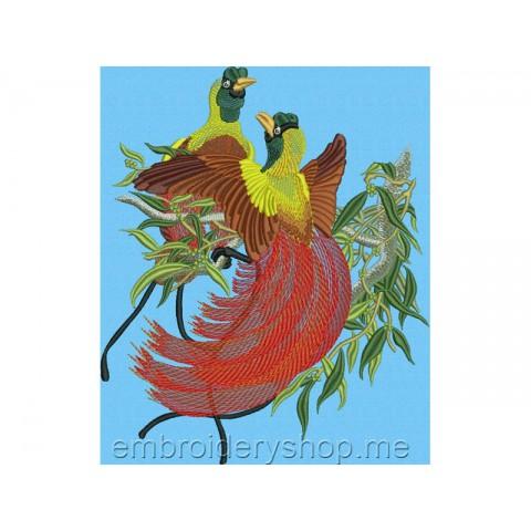 Красная райская птица brd0022