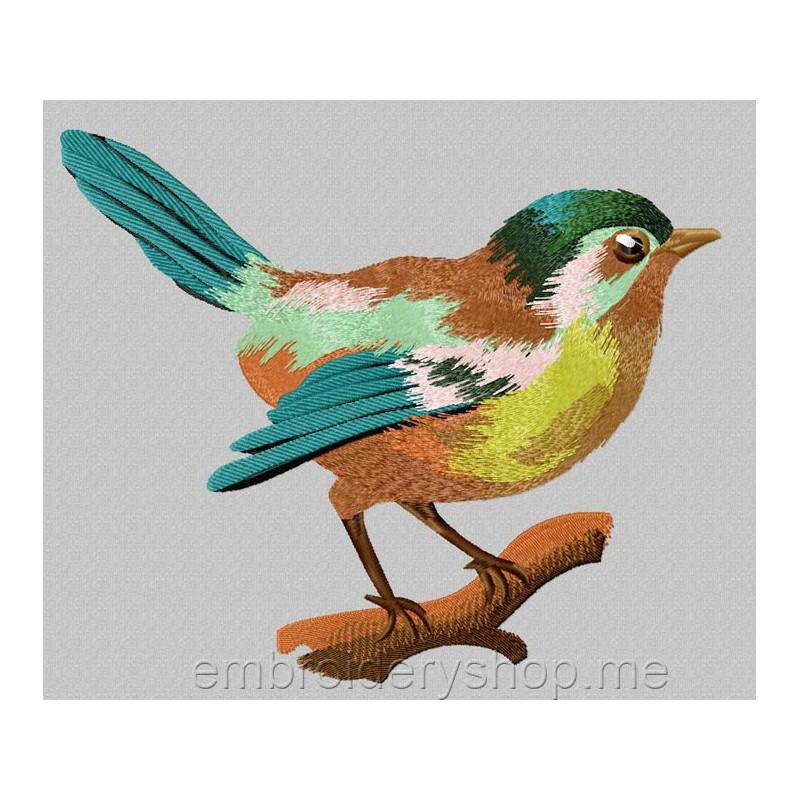 Птица brd0024
